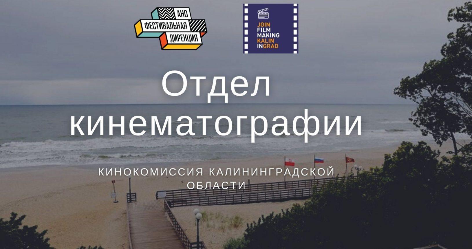 кинокомиссия калининград